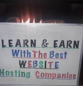 Learn And Earn With The Best Website Hosting Companies