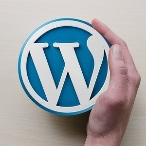 WordPress Plugins To Increase Your Website Speed