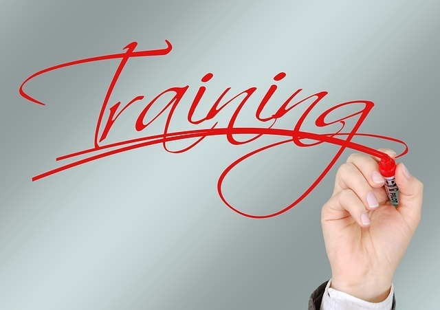Best Time To Start A Business Is During Training